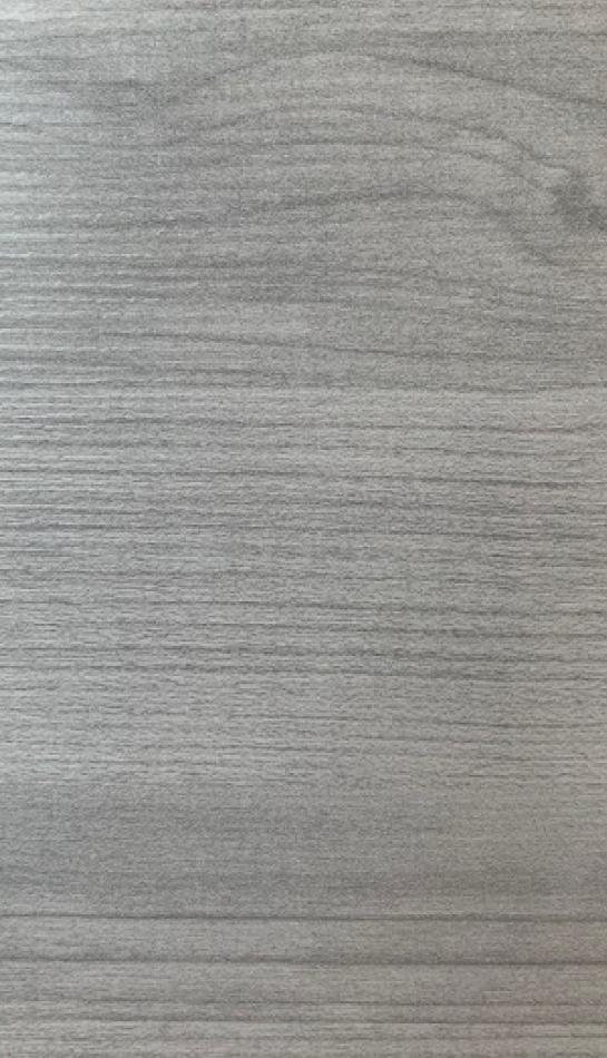 olmo-grigio-2n